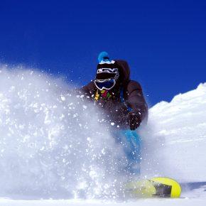 SNOW SAFARI   REPORT