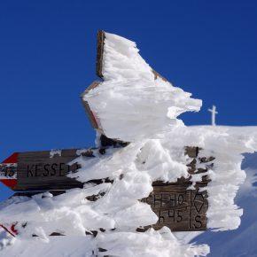 SNOW SAFARI | REPORT